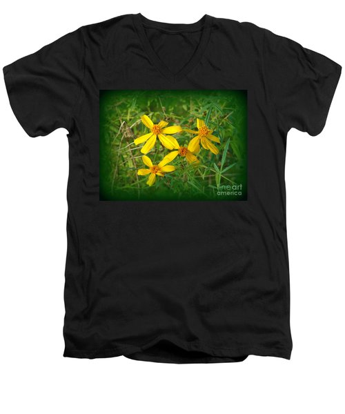 Yellow Quartet Men's V-Neck T-Shirt