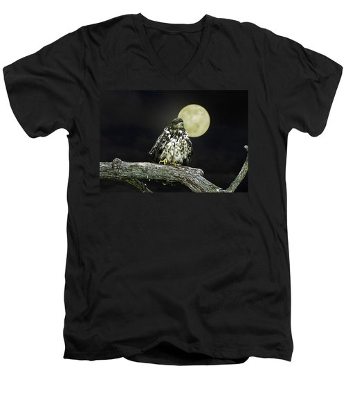 Men's V-Neck T-Shirt featuring the photograph Young Bald Eagle By Moon Light by John Haldane