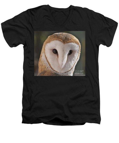 Young Barn Owl Men's V-Neck T-Shirt