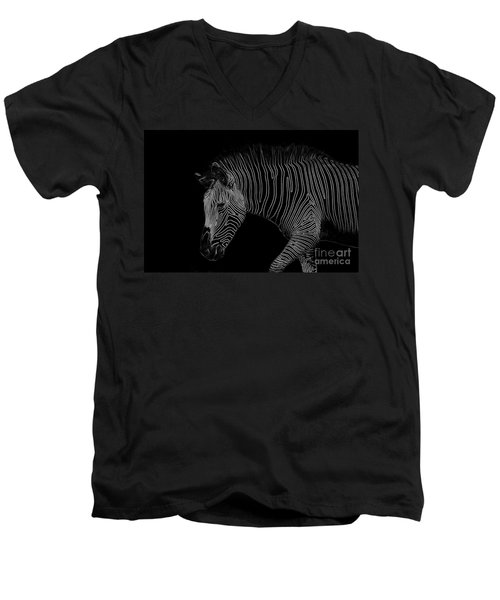 Zebra Art Men's V-Neck T-Shirt