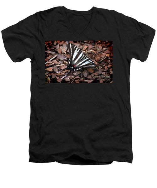 Zebra Swallowtail Butterfly Men's V-Neck T-Shirt