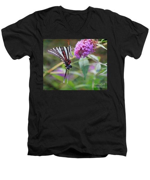 Zebra Swallowtail Butterfly On Butterfly Bush  Men's V-Neck T-Shirt