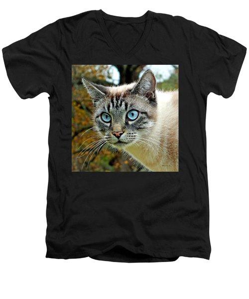 Zing The Cat Upclose Men's V-Neck T-Shirt