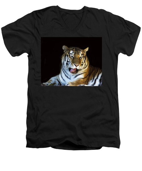Awaking Tiger Men's V-Neck T-Shirt