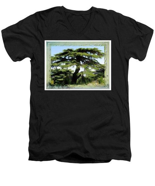 Do-00512 Cedar Forest Men's V-Neck T-Shirt