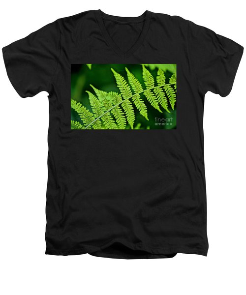 Men's V-Neck T-Shirt featuring the photograph Fern Seed by Sharon Elliott