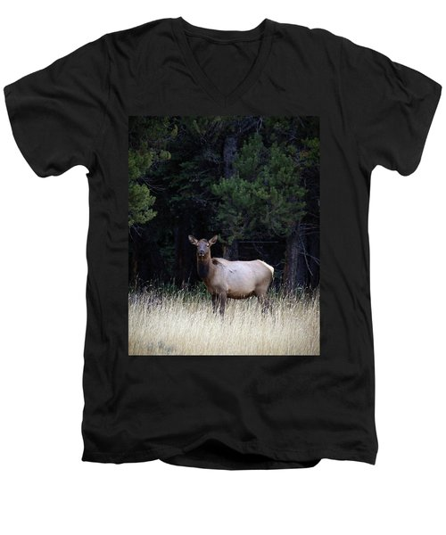 Men's V-Neck T-Shirt featuring the photograph Forest Elk by Steve McKinzie