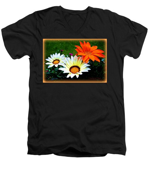 Garden Daisies Men's V-Neck T-Shirt
