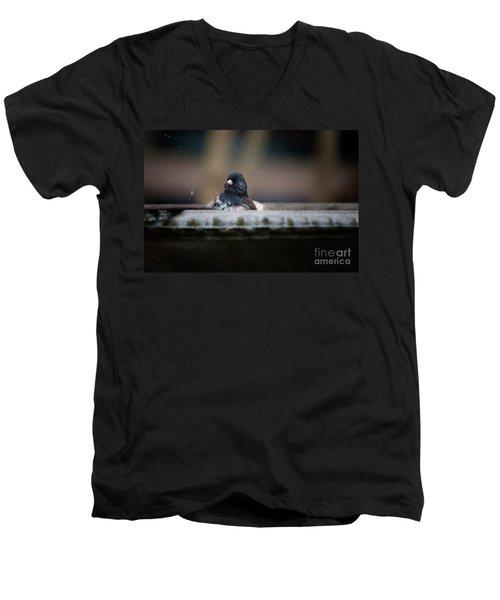 Junco In The Birdbath Men's V-Neck T-Shirt by Carol Ailles
