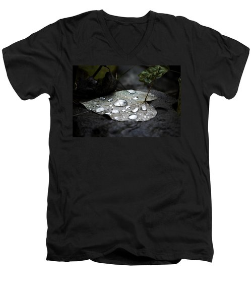Men's V-Neck T-Shirt featuring the photograph My Heart Weeps by Peggy Franz