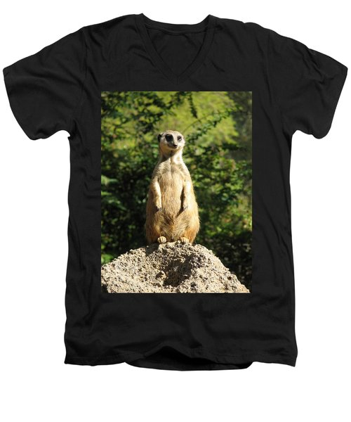 Men's V-Neck T-Shirt featuring the photograph Sentinel Meerkat by Carla Parris