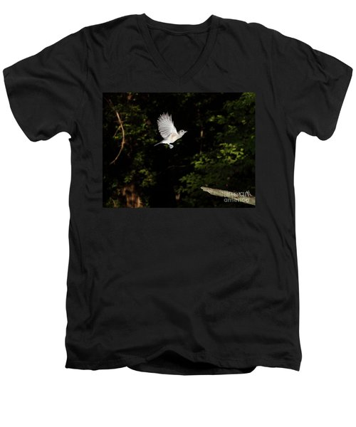 Tufted Titmouse In Flight Men's V-Neck T-Shirt by Ted Kinsman