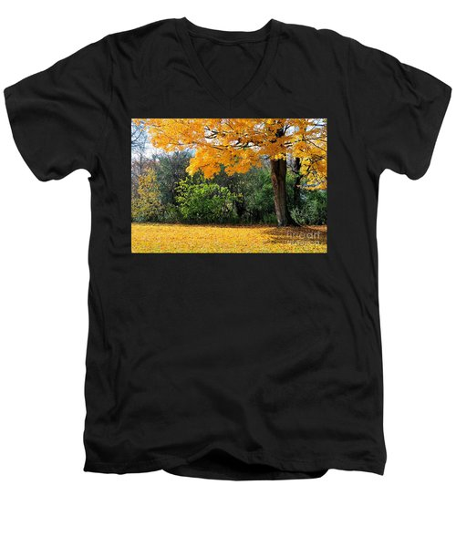 Men's V-Neck T-Shirt featuring the photograph Tree Of Gold by Joe  Ng