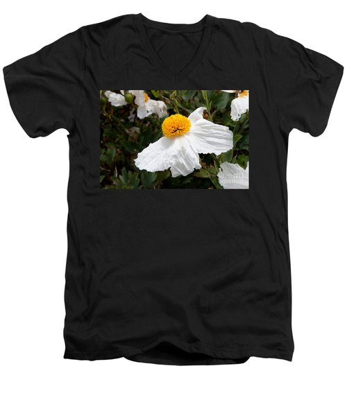 Along Big Sur Men's V-Neck T-Shirt