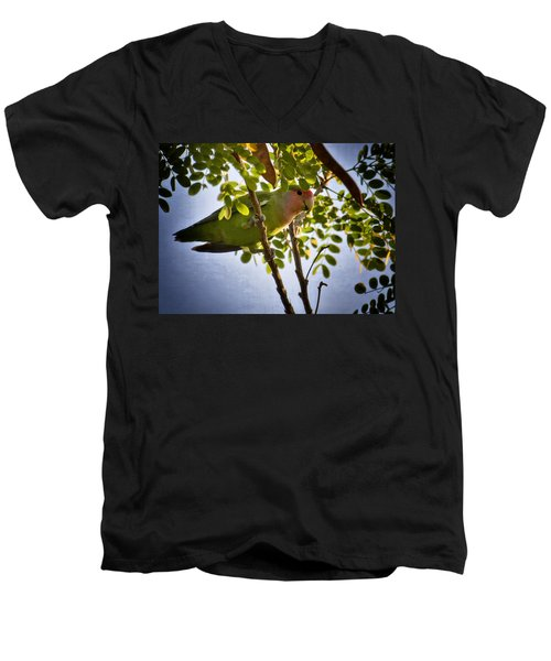 A Little Love  Men's V-Neck T-Shirt