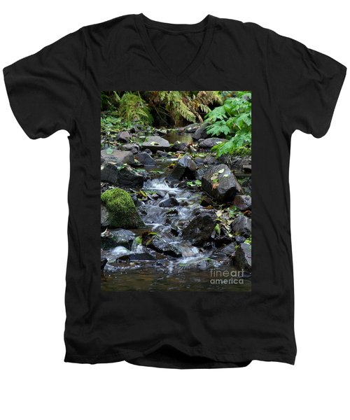 Men's V-Neck T-Shirt featuring the photograph A Peaceful Stream by Chalet Roome-Rigdon