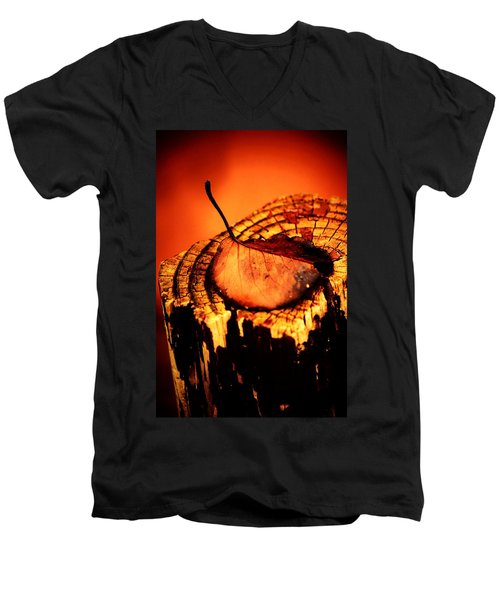 Men's V-Neck T-Shirt featuring the photograph A Pose For Fall by Jessica Shelton