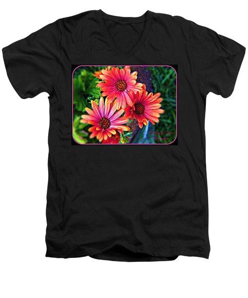African Daisy Men's V-Neck T-Shirt
