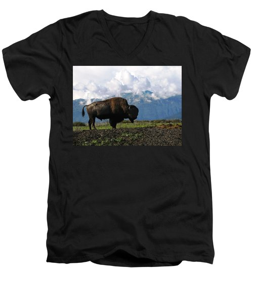 Men's V-Neck T-Shirt featuring the photograph Alaskan Buffalo by Katie Wing Vigil