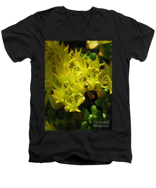 Almost Undersea Men's V-Neck T-Shirt by Rory Sagner