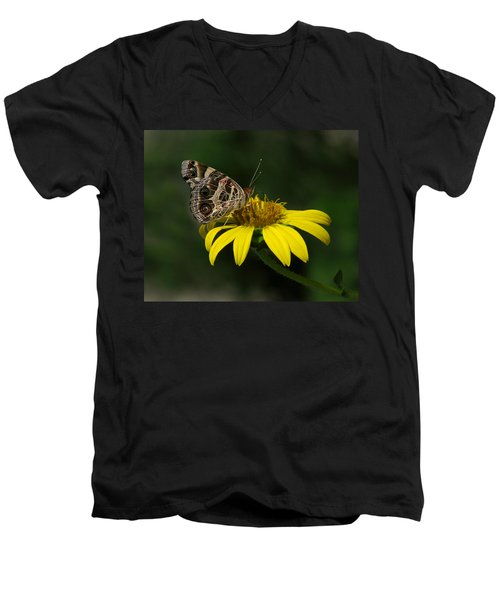 American Lady Men's V-Neck T-Shirt