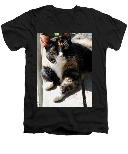 Annie Banannie Men's V-Neck T-Shirt by Rory Sagner