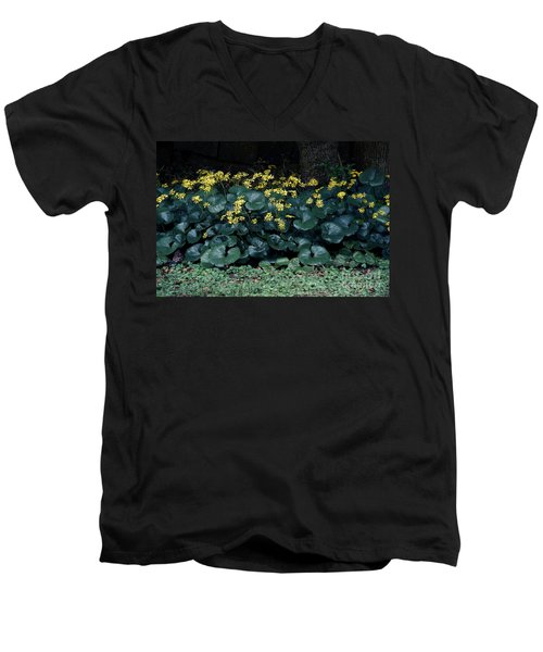 Autumn Flowers Men's V-Neck T-Shirt