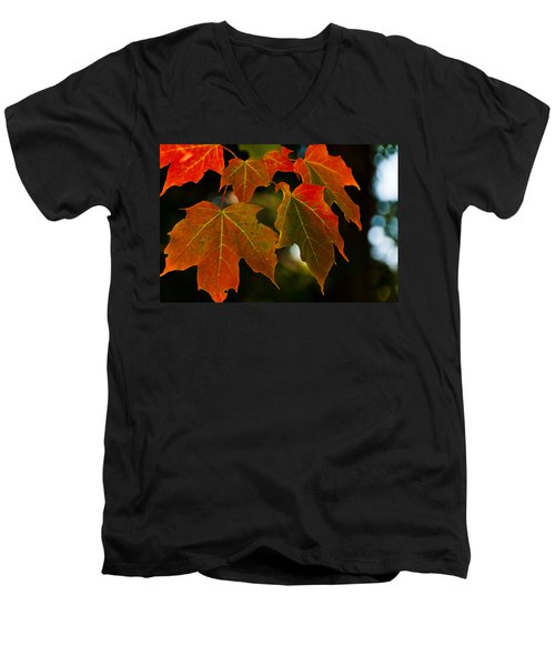 Men's V-Neck T-Shirt featuring the photograph Autumn Glory by Cheryl Baxter