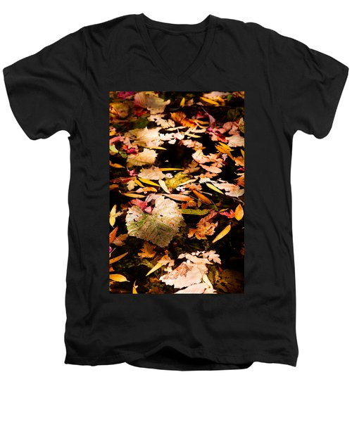 Autumn In Texas Men's V-Neck T-Shirt