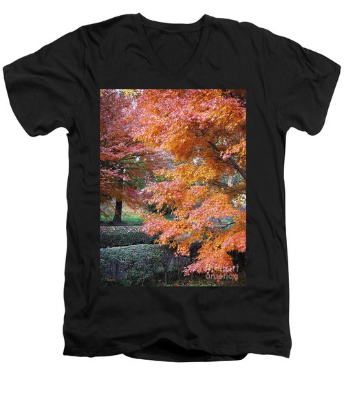 Autumn Momiji Men's V-Neck T-Shirt
