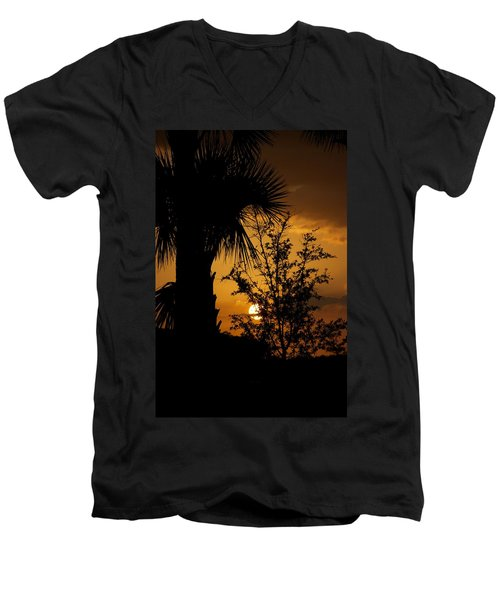 Ave Maria Men's V-Neck T-Shirt