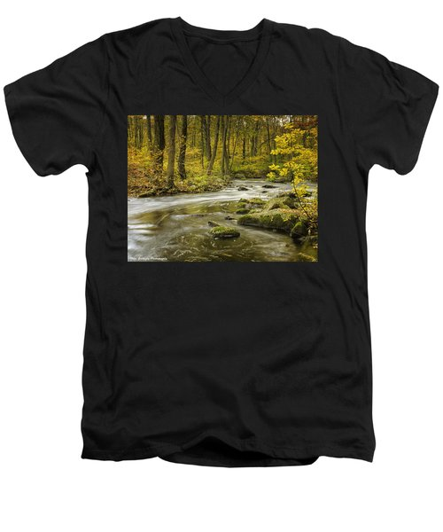 Babbling Brook Men's V-Neck T-Shirt