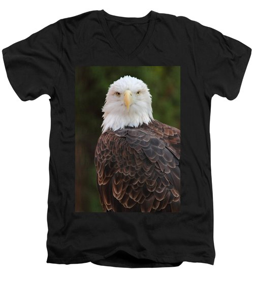 Men's V-Neck T-Shirt featuring the photograph Bald Eagle by Coby Cooper