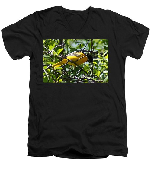 Baltimore Oriole Men's V-Neck T-Shirt by Joe Faherty