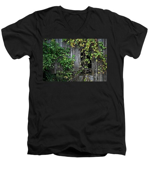 Barn Window Vine Men's V-Neck T-Shirt