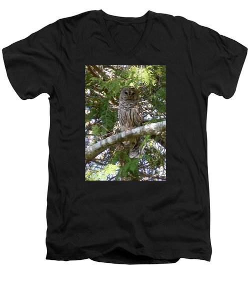 Men's V-Neck T-Shirt featuring the photograph Barred Owl  by Francine Frank