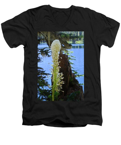 beargrass and Stump Men's V-Neck T-Shirt