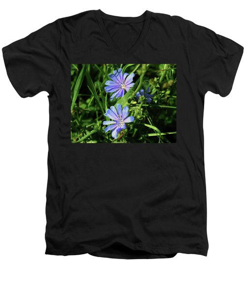 Beauty Of The Field Men's V-Neck T-Shirt