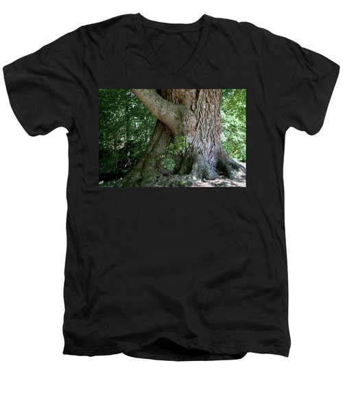 Big Fat Tree Trunk Men's V-Neck T-Shirt
