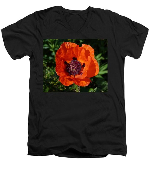 Men's V-Neck T-Shirt featuring the photograph Big Red Poppy by Lynn Bolt