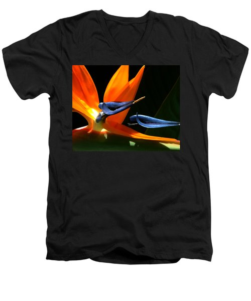 Bird Of Paradise Men's V-Neck T-Shirt