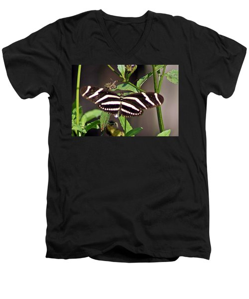 Black Butterfly Men's V-Neck T-Shirt by Joe Faherty