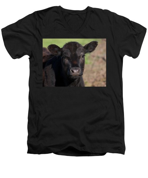 Black Cow Men's V-Neck T-Shirt