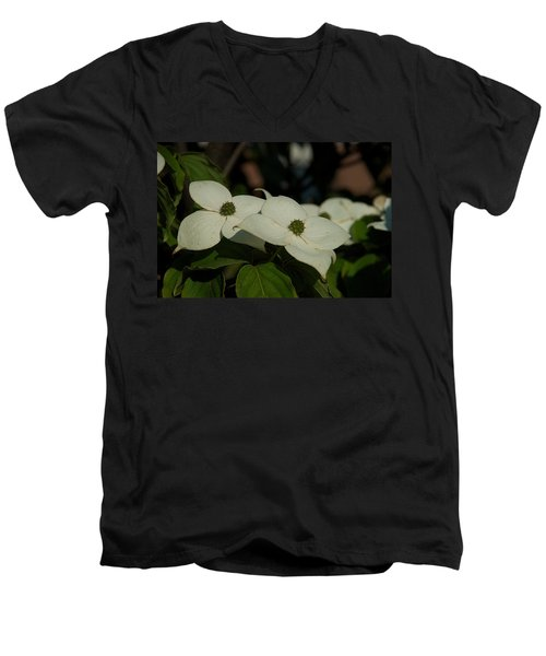 Men's V-Neck T-Shirt featuring the photograph Blanket by Joseph Yarbrough