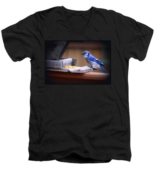 Men's V-Neck T-Shirt featuring the photograph Blue Jay On Backyard Feeder by Kay Novy