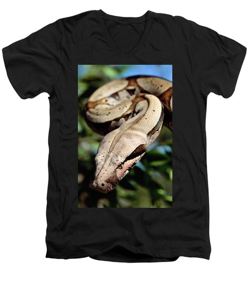 Boa Constrictor Boa Constrictor Men's V-Neck T-Shirt by Claus Meyer