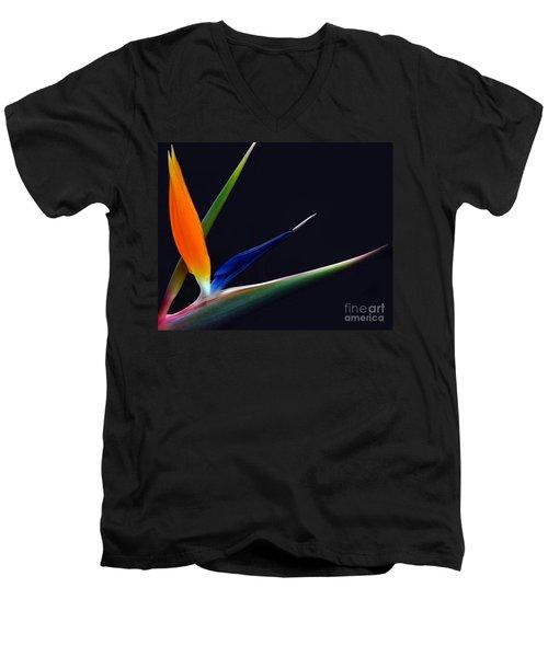 Bright Bird Of Paradise Rectangle Frame Men's V-Neck T-Shirt
