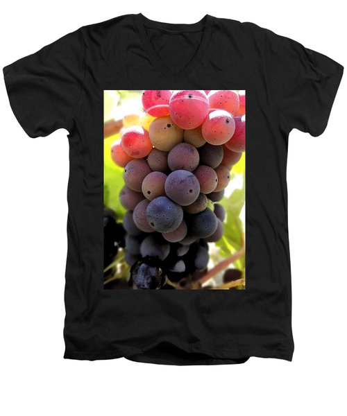 Men's V-Neck T-Shirt featuring the digital art Bunch Of Ripening Grapes by Anne Mott