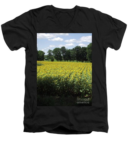 Buttonwood Farm Men's V-Neck T-Shirt