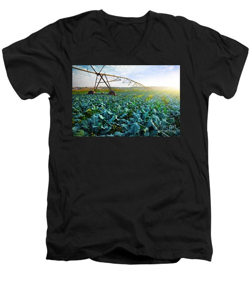 Cabbage Growth Men's V-Neck T-Shirt by Carlos Caetano